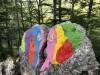 Za turistikou se vydejte do nedalekého Národního parku Učka