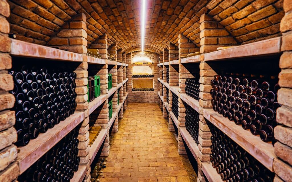 Vinný sklep, Vinařství Linter u Znojma