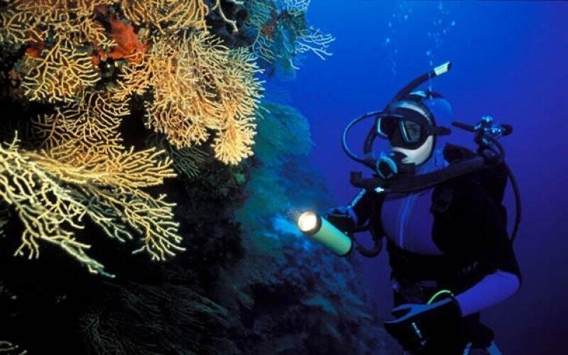 Potápění Chorvatsko Slevoking