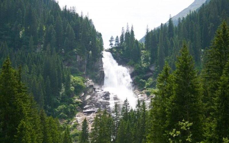 Gemshorn Alpy Rakousko Slevoking