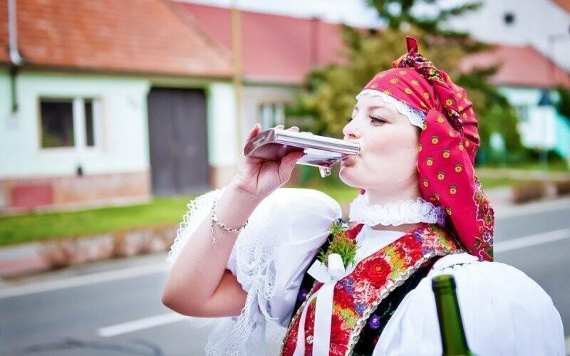 Folklor, kroj, víno  Penzion Mlýn Víno Morava Sleva Slevoking