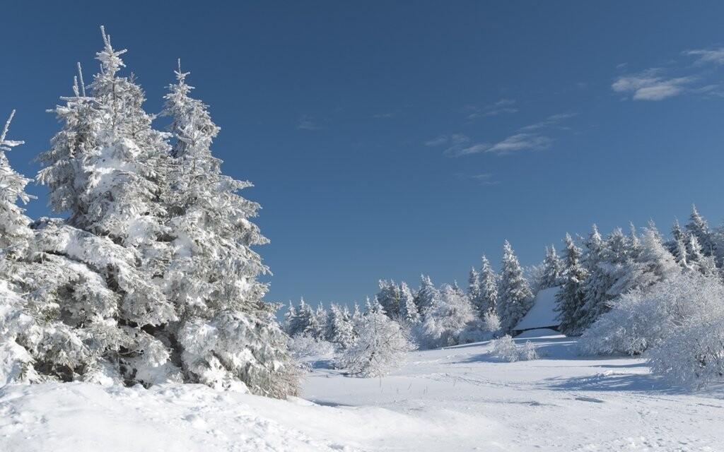 Krásná příroda Orlických hor...