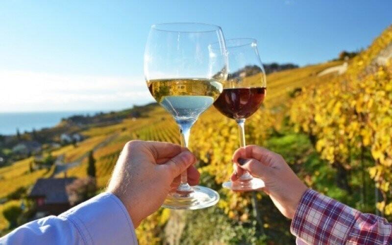 Romantika na južnej Morave pre dvoch s polpenziou a vínom