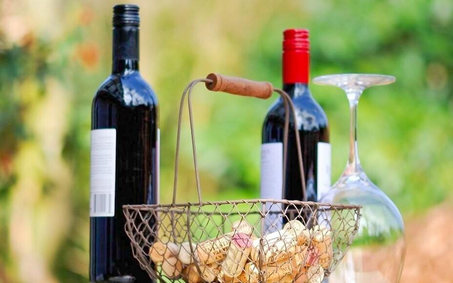 Těšte se na degustaci vína