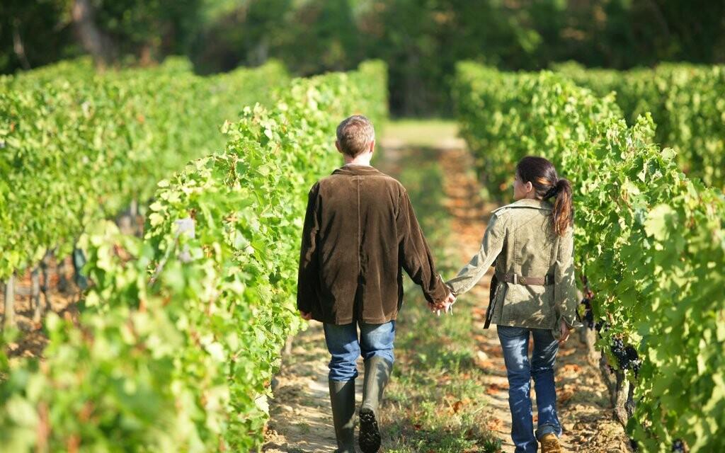 Prožijte vinařský pobyt na jižní Moravě v obci Čejč