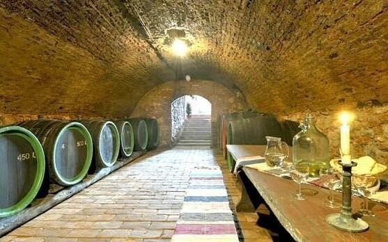 K dispozici je spousta druhů vín od místních vinařů