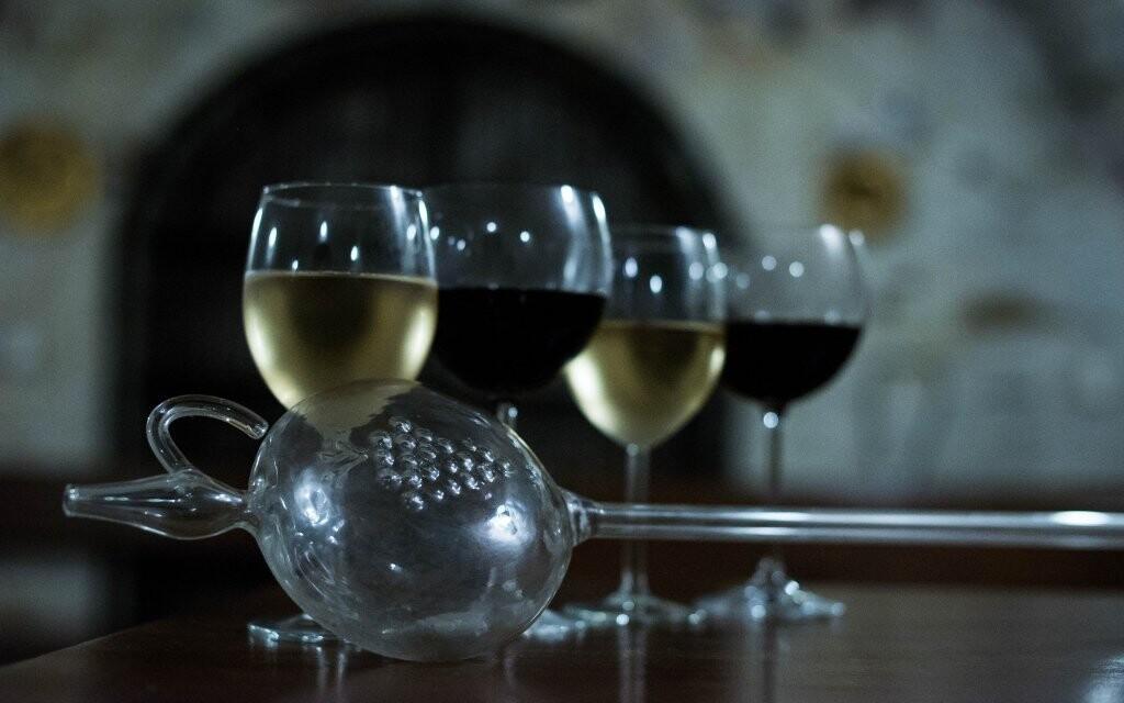 Ochutnáte ta nejlepší moravská vína