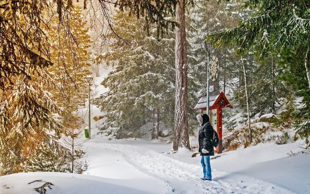 Okolní příroda láká k prozkoumání pěšky i na lyžích
