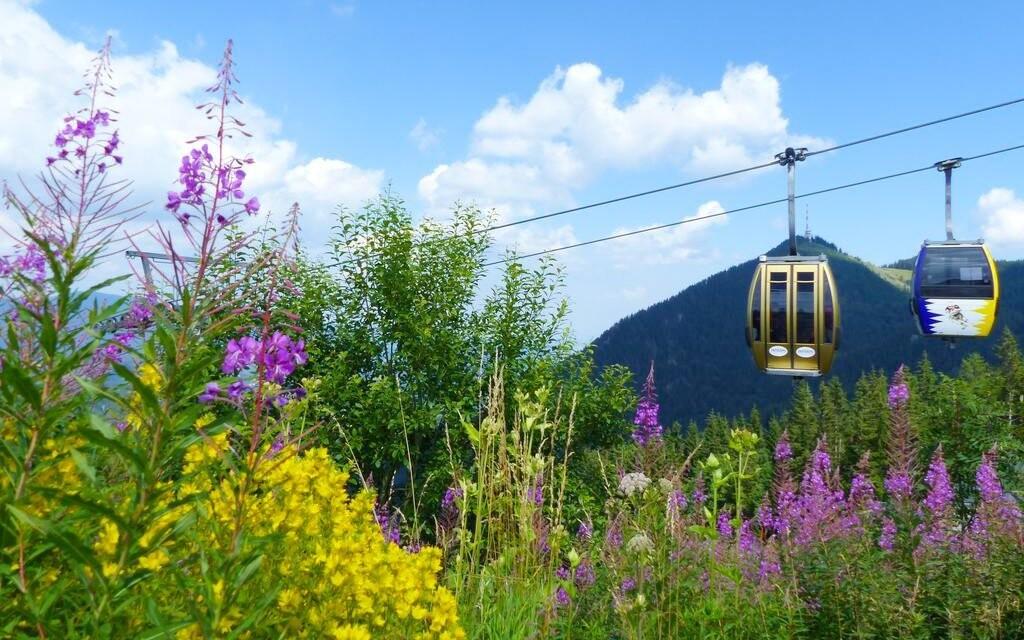 Užijte si přírodu ve Vídeňských Alpách