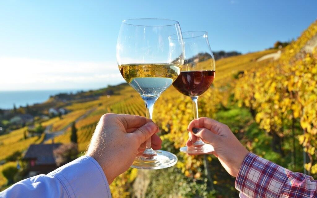 Těšte se na degustaci místních vín