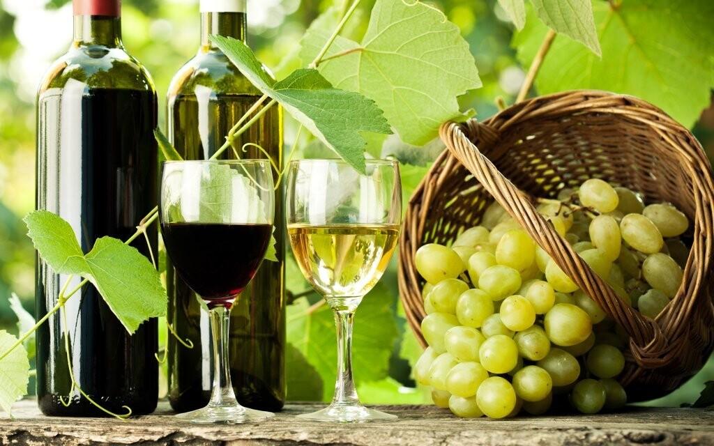 Víno z jižní Moravy si odvezete také domů