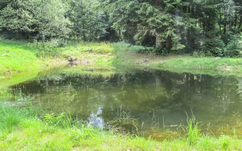 Osvěžit se můžete v rybníčku