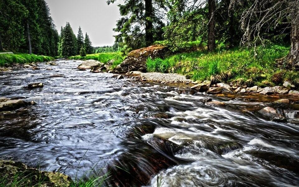 Národní park Šumava je krásný v každém ročním období