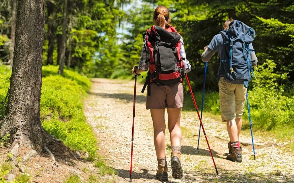Turistika s Nordic Walking palicami, Krušné hory
