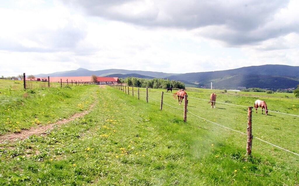 Hotel Farma Vysoká *** leží uprostřed přírody