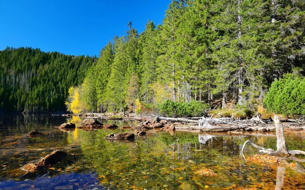 Černé jazero, Národný park Šumava, Česká republika