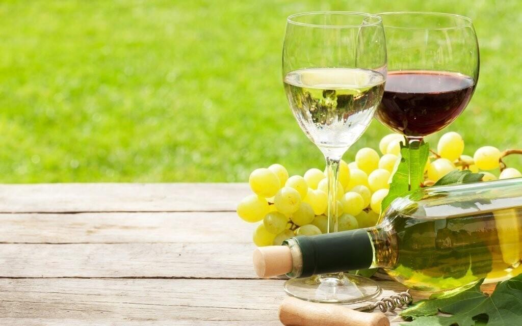 Tešte sa na dobré víno