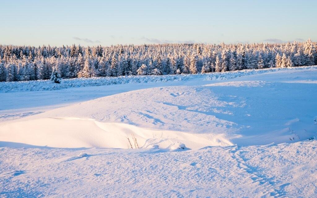 Užijte si zimní dovolenou v Krušných horách