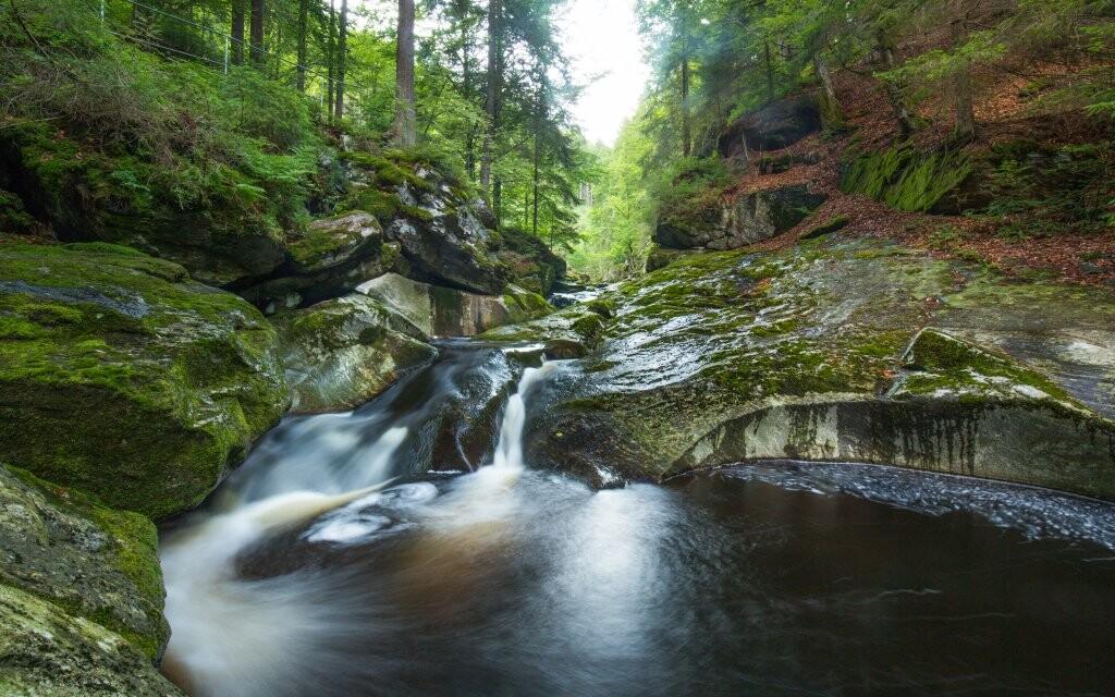 V Německu stojí za vidění Bavorský les