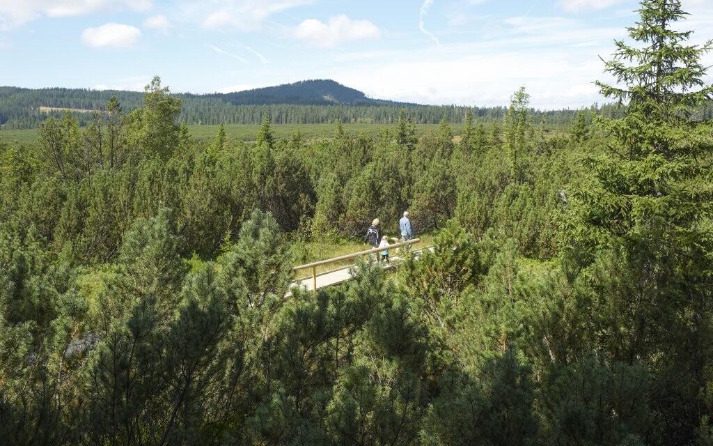Příroda, Národný park Šumava, Česko