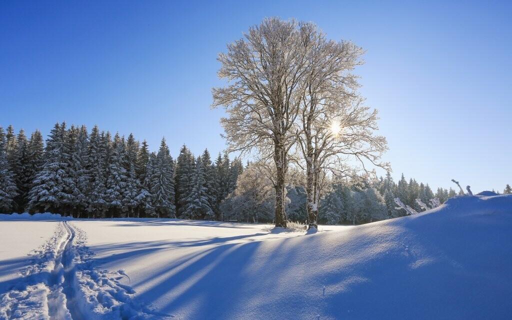 Užijte si zimu na Šumavě