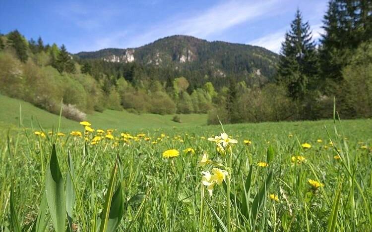 Krásná příroda Malá Fatra, Slovensko