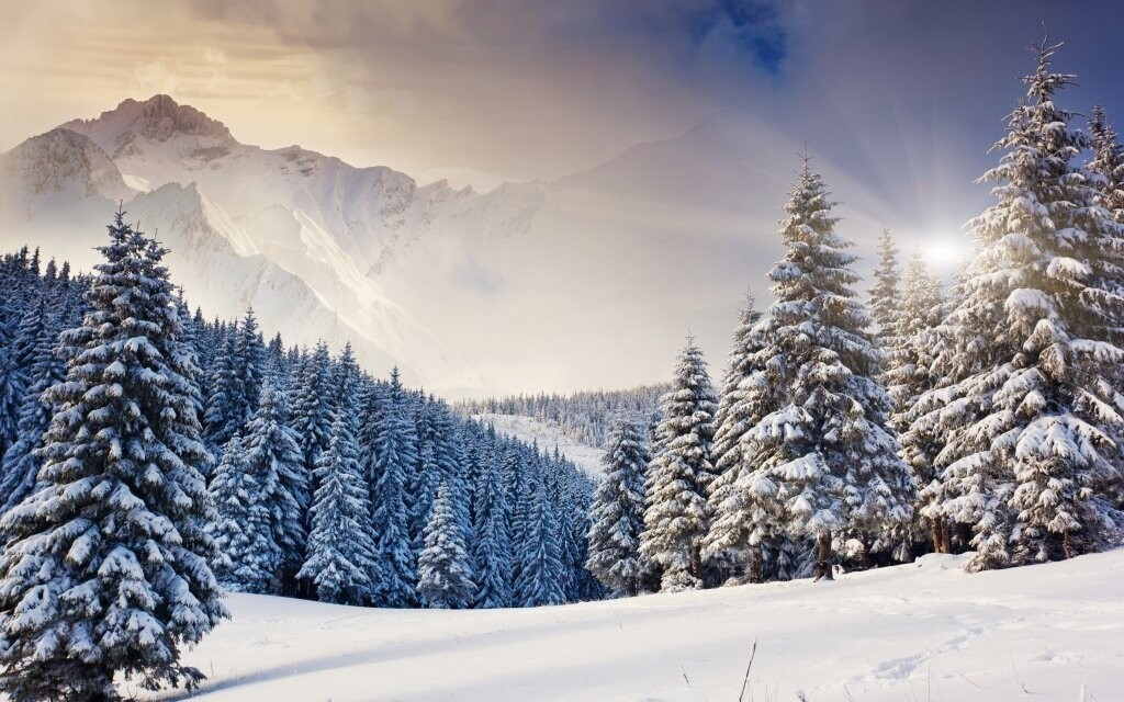 Projděte se po krásné alpské přírodě