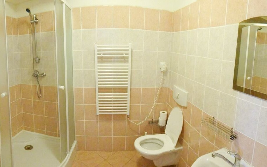 Pokoje mají koupelnu, Hotel Alfonska ***, Benecko, Krkonoše