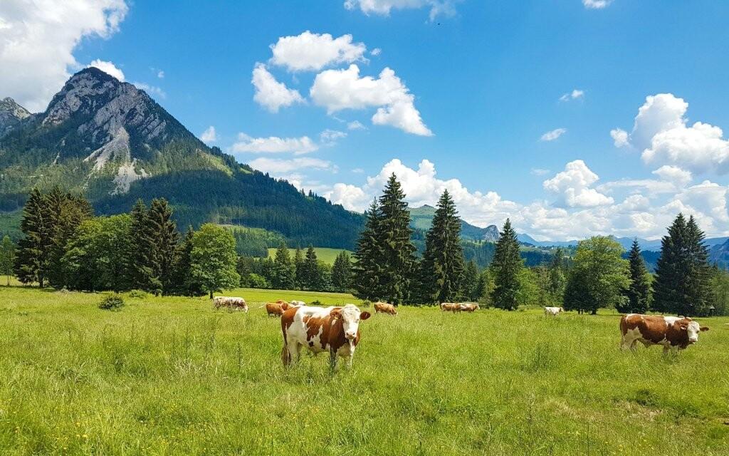 Užijte si krásnou rakouskou přírodu