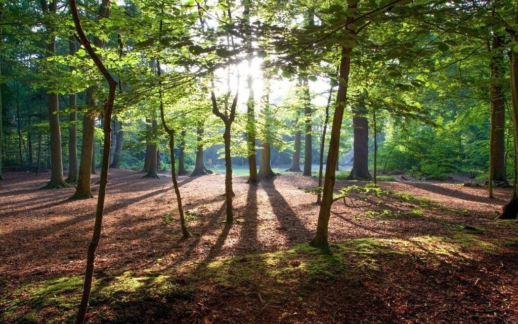 Relaxujte uprostred krásnej prírody v Posázaví
