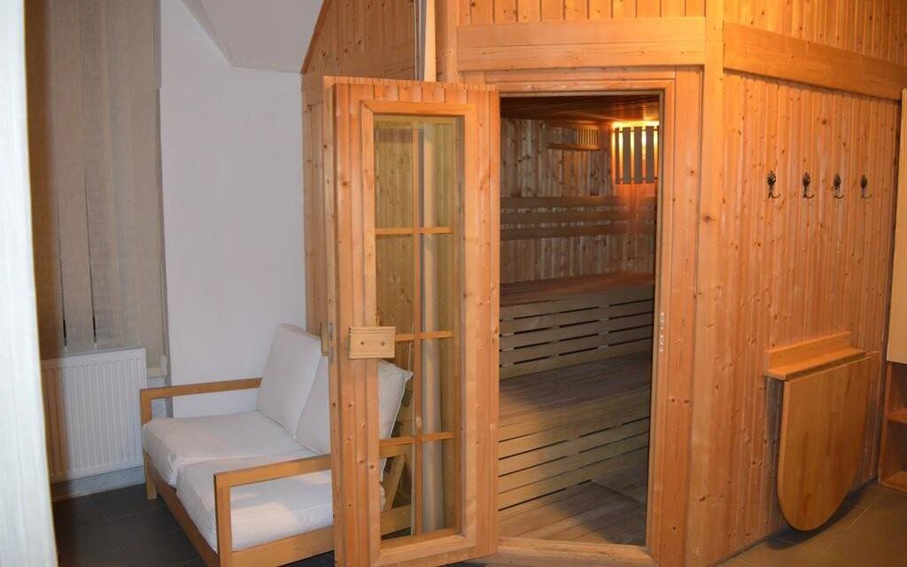 K dispozícii je sauna, Penzión Horec, Králíky