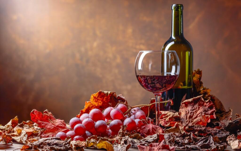 Víno, pobyt s vínem, Penzion Retro Vrbovec, jižní Morava