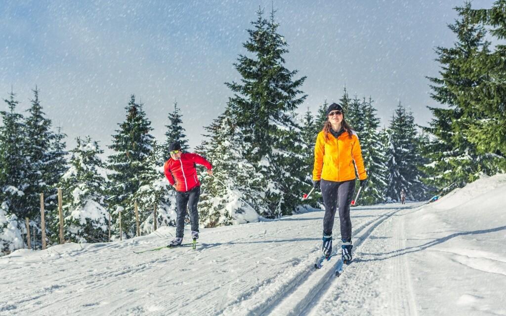 Spoznejte krásy Šumavy v zimě