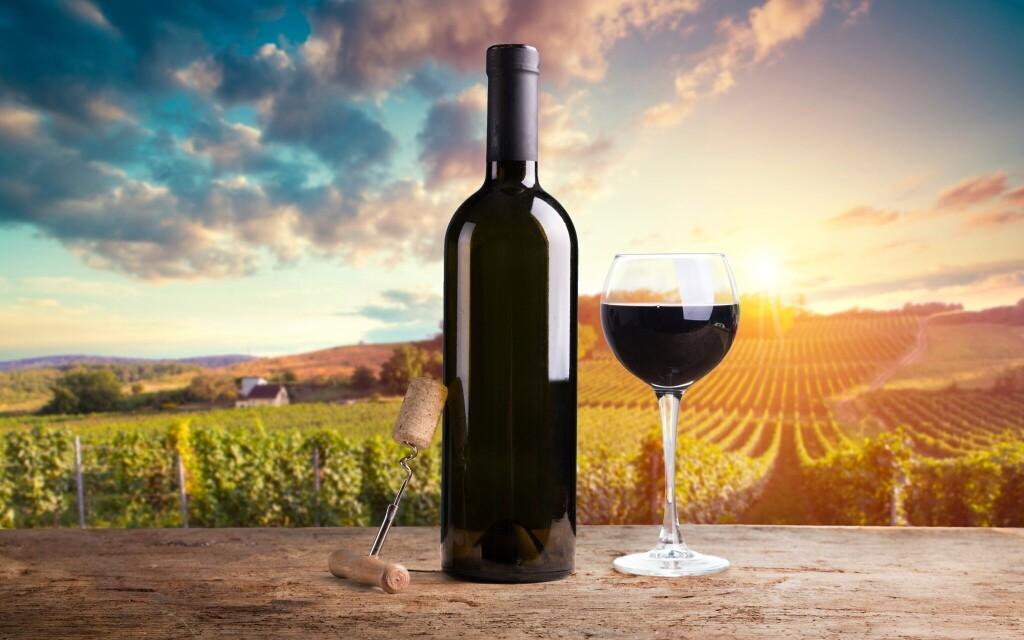 Prejdite sa vinárskym Znojmom a krásnym NP Podyjí