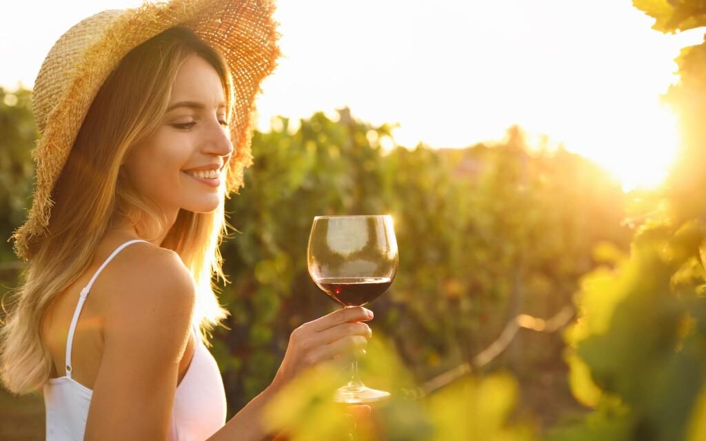 Víno, južná Morava