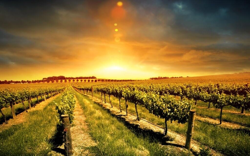Južná Morava je krásna krajina