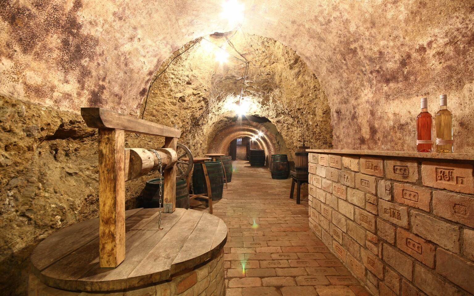 K jižní Moravě zkrátka patří vinné sklípky a dobré víno