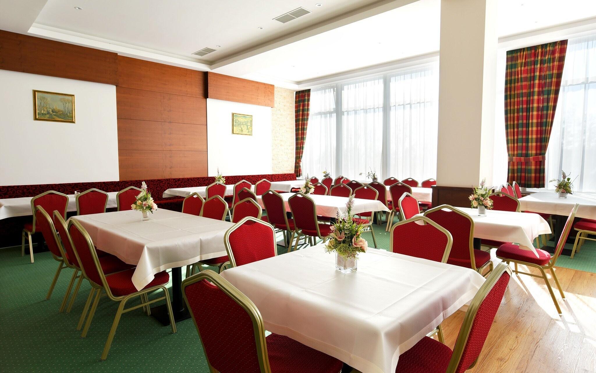 Hotelová restaurace, polopenze v Hotelu Lesana ***