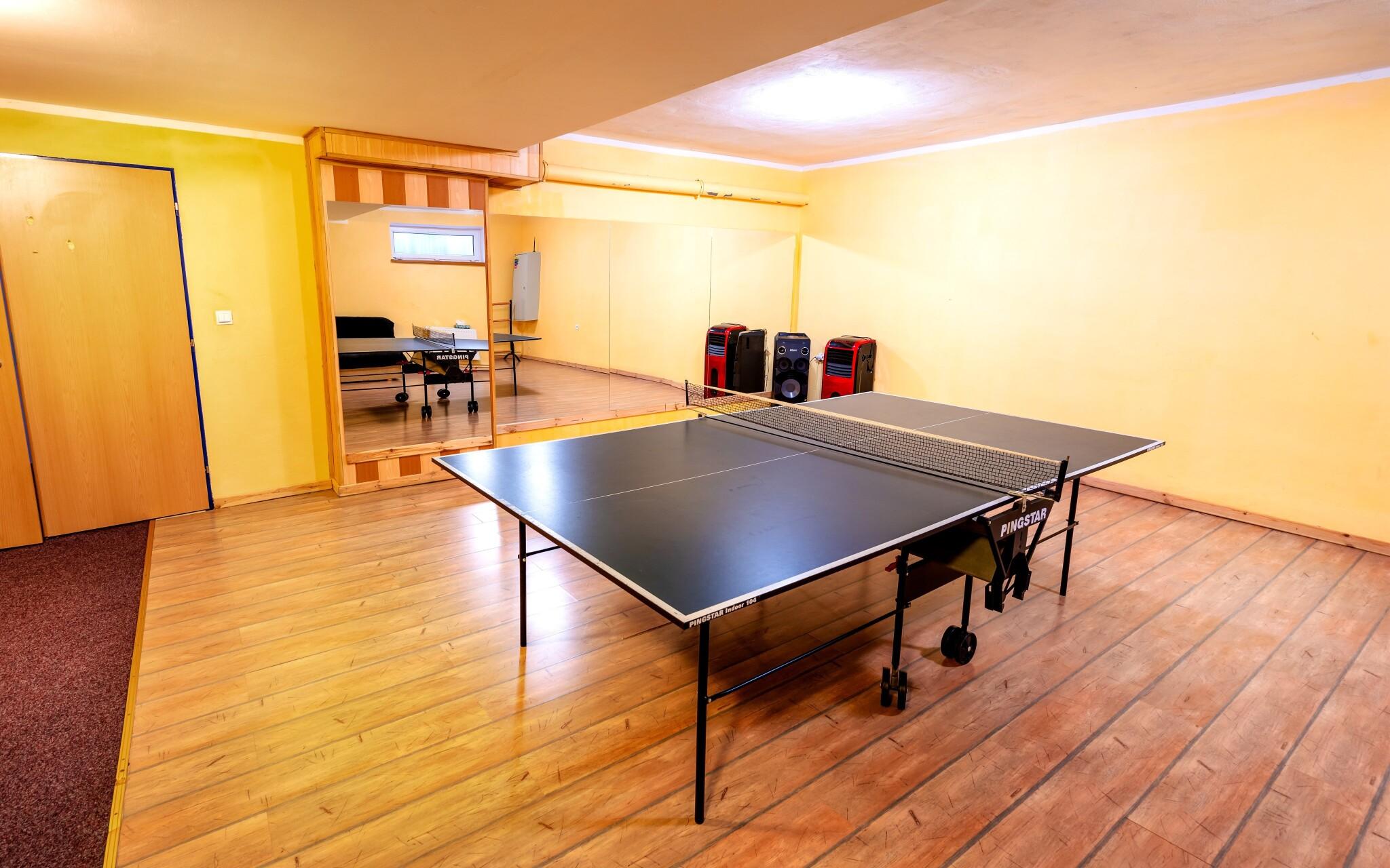Herna, stolní tenis, Hotel Park ***, Branná, Jeseníky