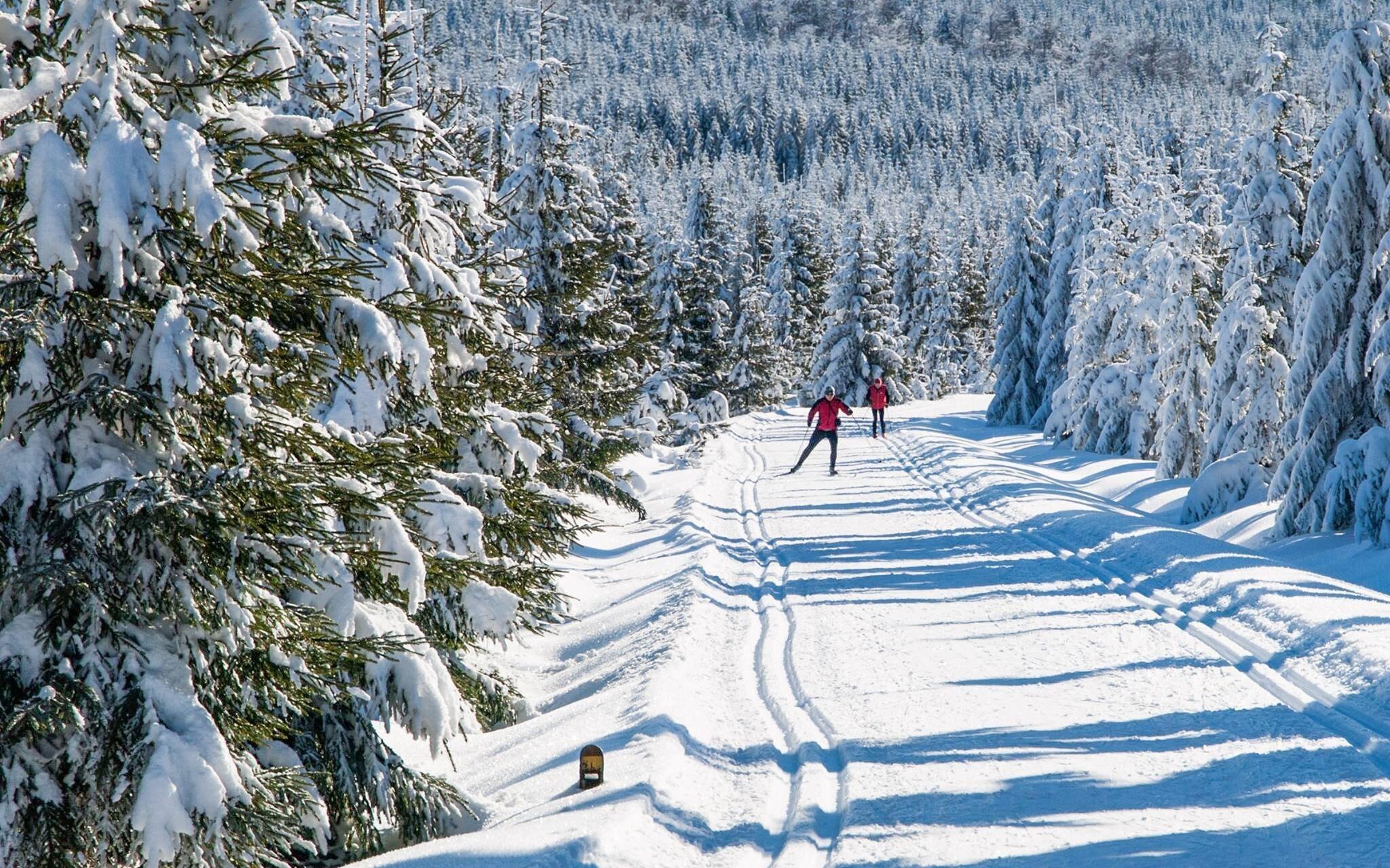 Užite si zimu v Jizerských horách