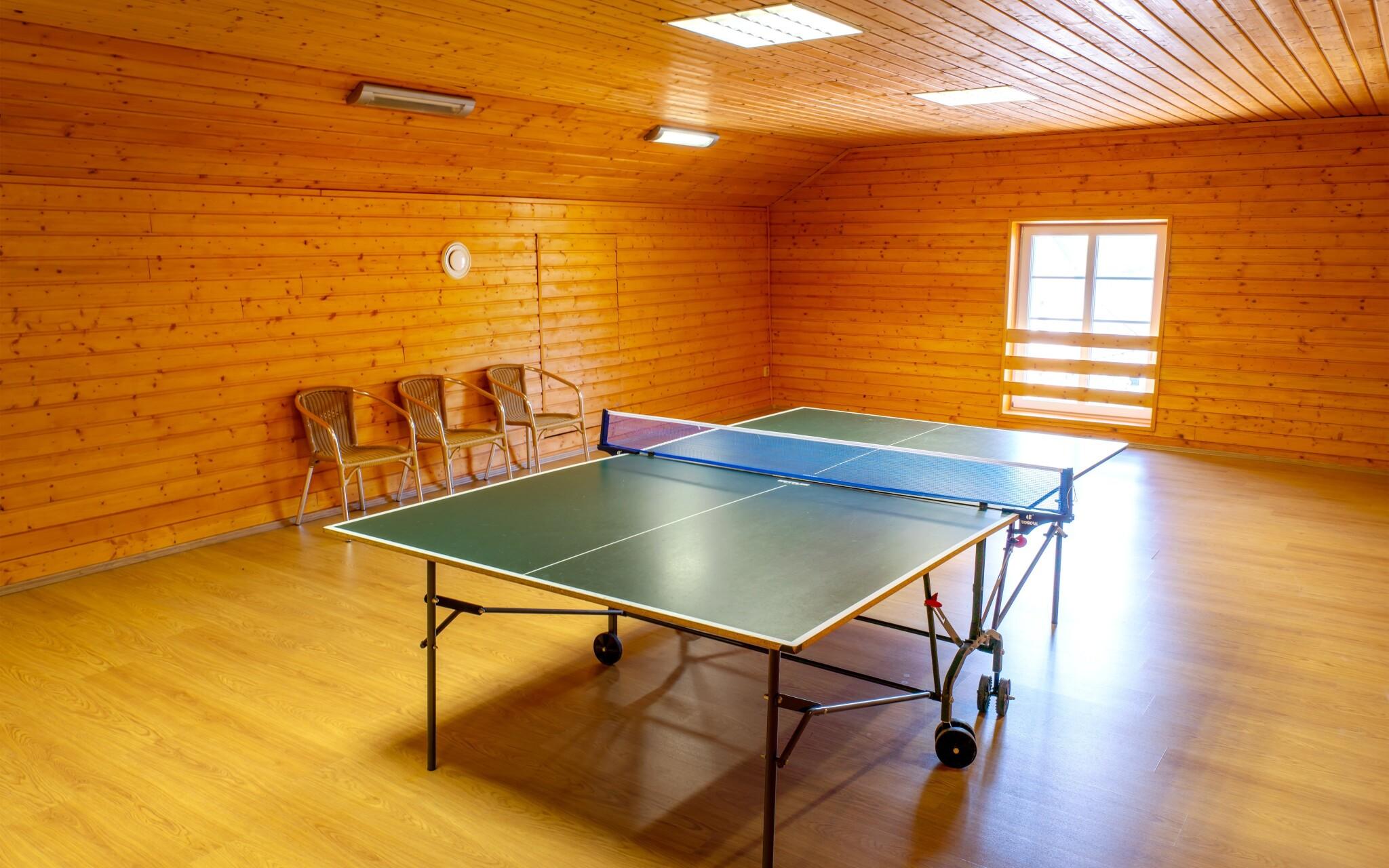 Stolní tenis, zábava v Centru Stone Jeseníky