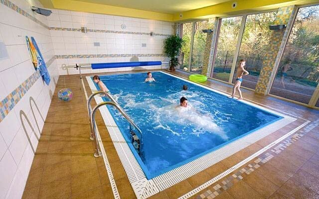 Bazén ve wellness Penzionu Samohel ***