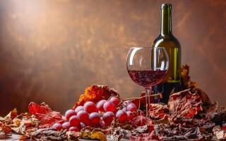 Víno, pobyt s vínom, Penzión Retro Vrbovec, južná Morava