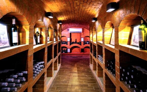 Vinná galerie, degustace vín, Hotel Lidový dům ***