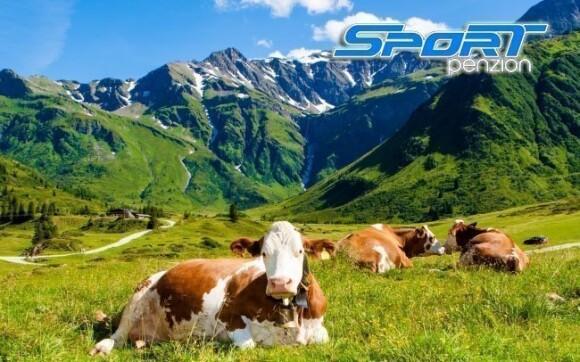 Kochejte se krásnou přírodou Alp