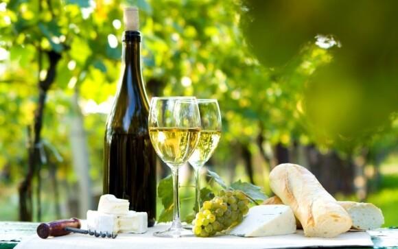 Neochutnat během tohoto pobytu moravské víno by byl hřích