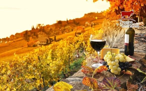Užijte si skvělý pobyt s vínem
