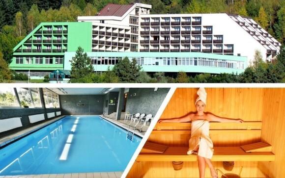 Užijte si bazén i wellness procedury v Hotelu Petr Bezruč