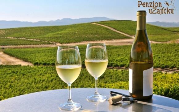 Víno k Jižní Moravě neodmyslitelně patří