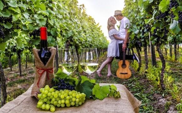 Užijte si skvělý vinařský pobyt